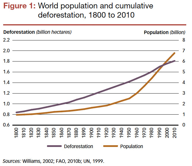 Deforestation and Population Growth