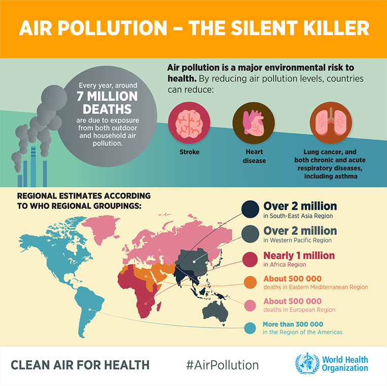 Deaths Caused by Air Pollution