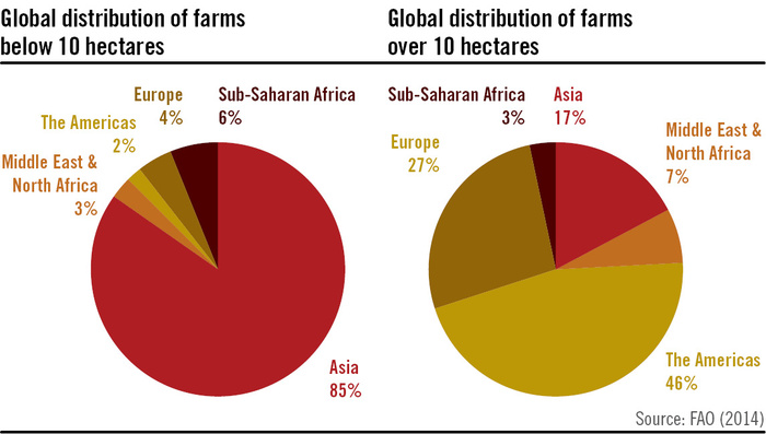Global Distribution of Small and Large Farms