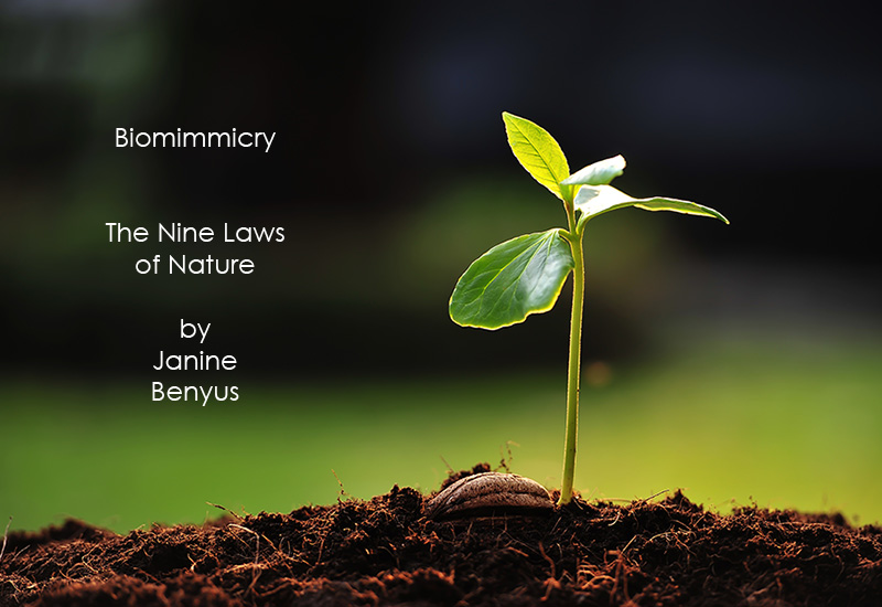 0-planet-earth-nine-laws-of-nature-biomimmicry