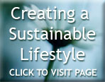 How to Create a Sustainable Lifestyle