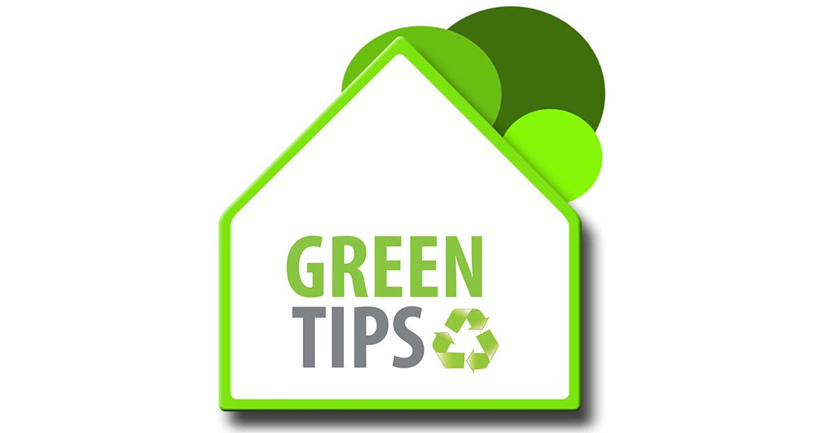 Sensationelle Green Eco Tips for Sustainable Living DV69